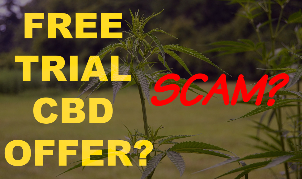 CBD Oil Free Trial Scam