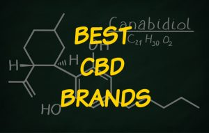 Best CBD Brands