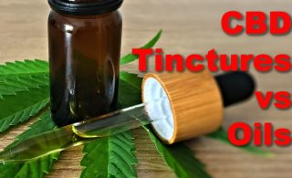 CBD tinctures vs Oil